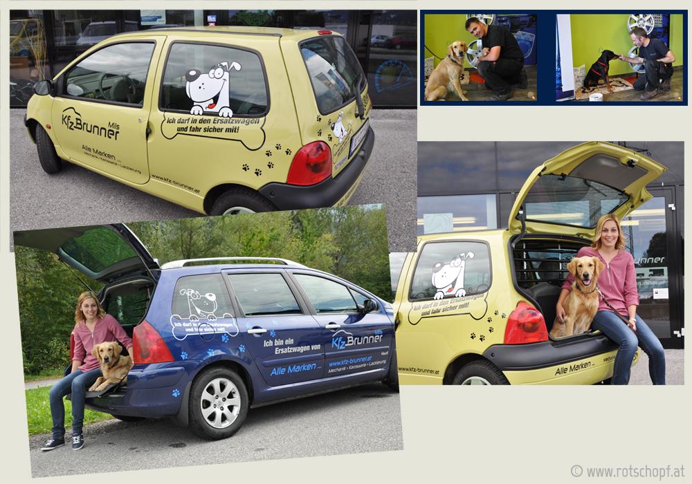 kfz-brunner-Auto-Fotos_hundewerbung_rotschopf.jpg